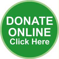 green donate button