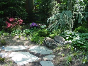 Back Yard Plantings by budding branch landscape & design