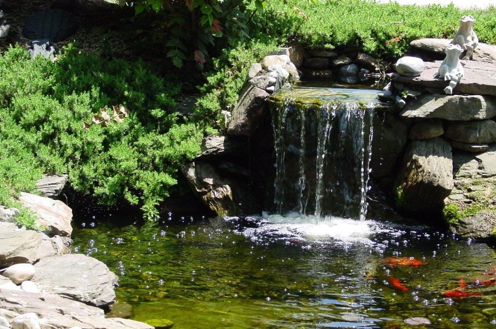 booker-waterfall.jpg?fit=1024%2C680&ssl=1