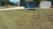 Lawn just after a total renovation