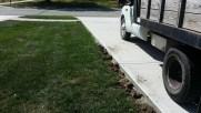driveway turf repair before
