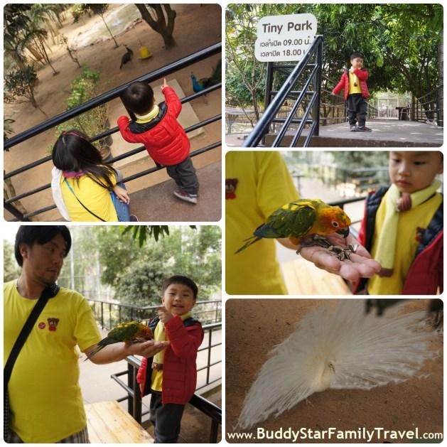 ที่เที่ยวเด็ก_โซนสวนสัตว์เล็กๆ_ดาษดา11