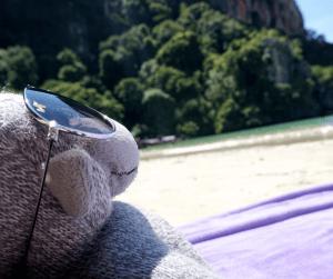 Buddy The Traveling Monkey on a beach in Krabi Thailand