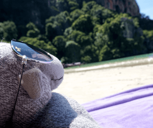 Buddy The Traveling Monkey on a beach in Krabi Thailand
