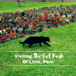 The Cat Park Of Lima Peru