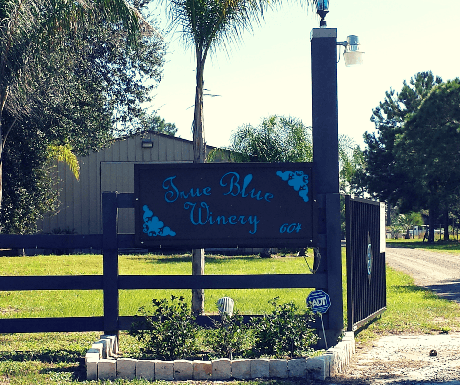 True Blue Winery in central florida
