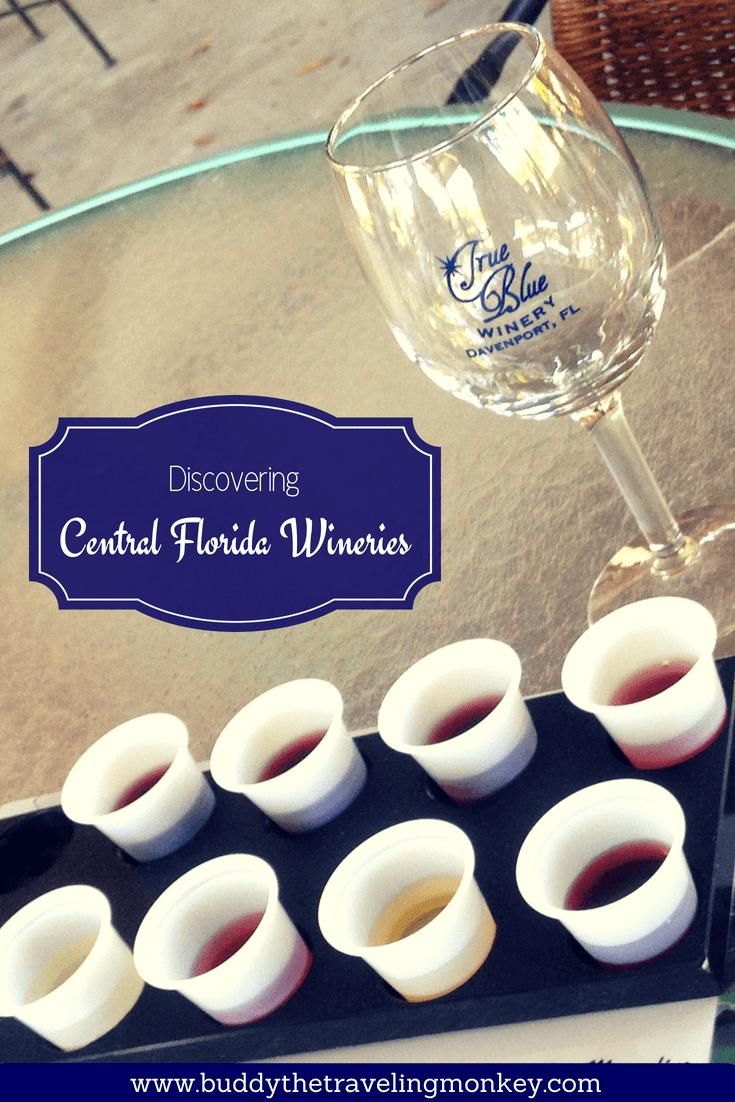 Visiting Central Florida wineries should be on everyone's list when exploring the area. Click to learn more about one of our favorites!