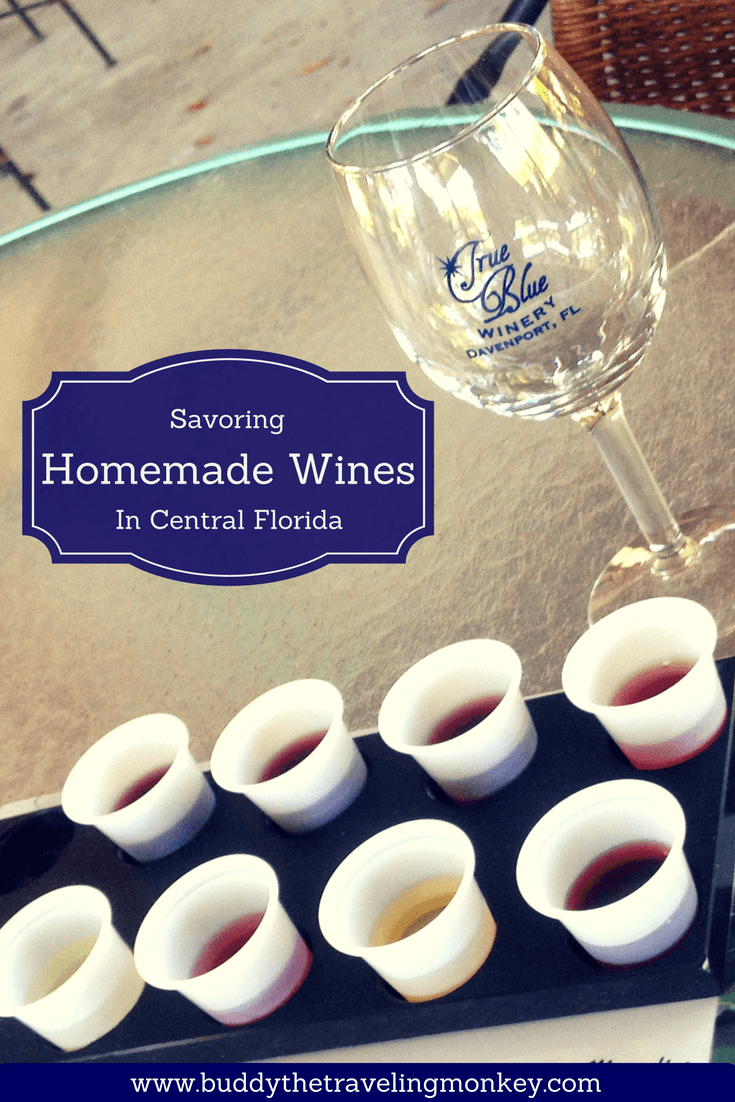 Located in Central Florida, True Blue Winery serves homemade blueberry and fruit wines as well as brick oven pizza and other snacks.