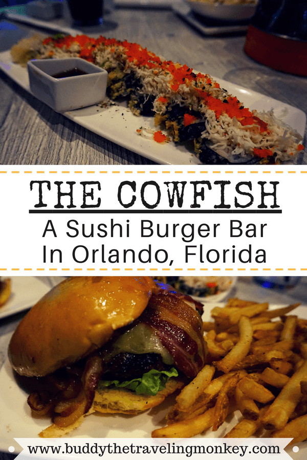 Buddy The Traveling Monkey Cowfish Orlando