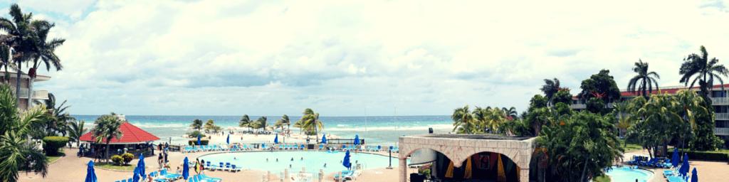 Buddy The Traveling Monkey Holiday Inn Resort Montego Bay
