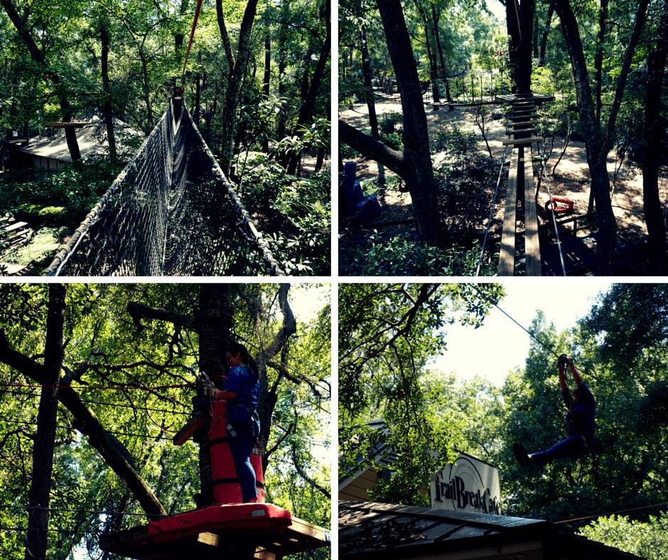 Tallahassee Museum ziplining