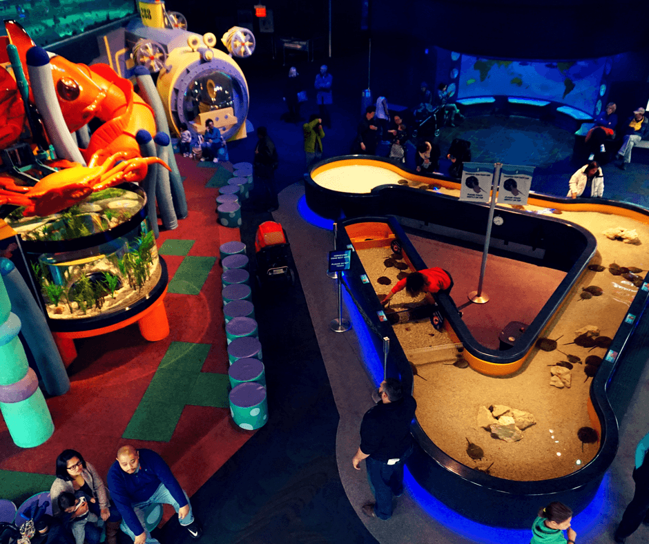 Kids play area inside the Ripley's Aquarium in Toronto
