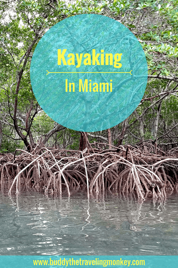 Kayaking in Virginia Key is a fun outdoor activity minutes from downtown Miami. You'll see mangroves, the downtown skyline, and local wildlife.