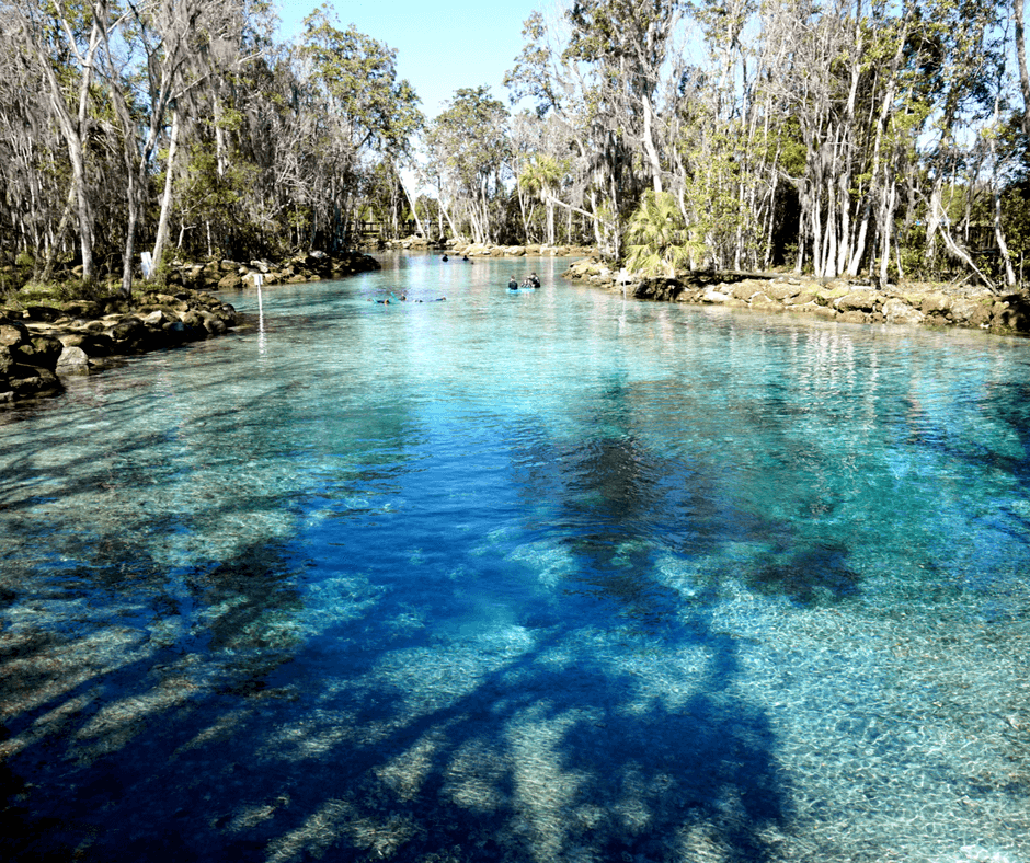 Three sisters springs in crystal river florida