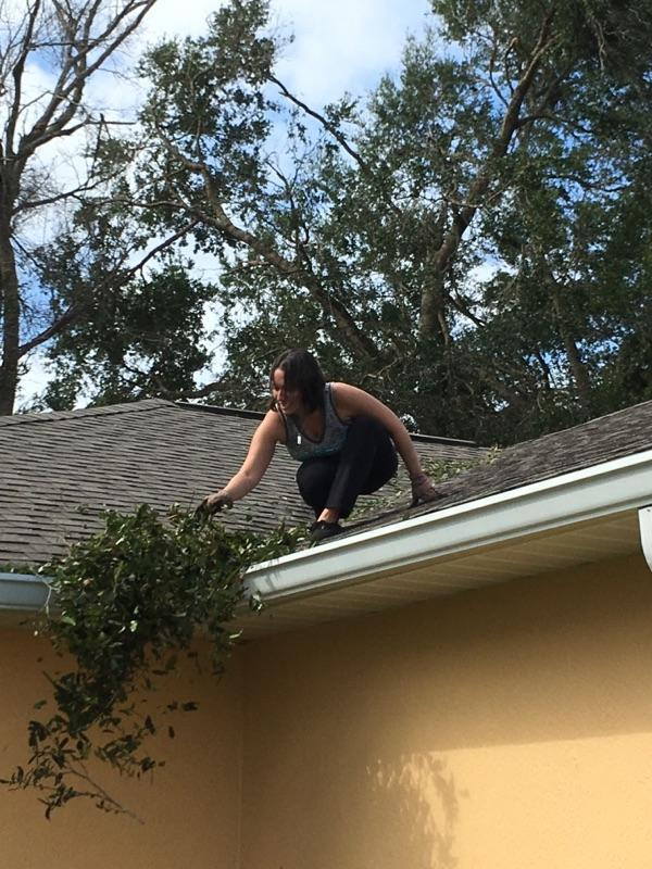 Cleaning the gutters after Hurricane Irma
