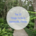 Top 12 Things To Do In Gainesville, Florida