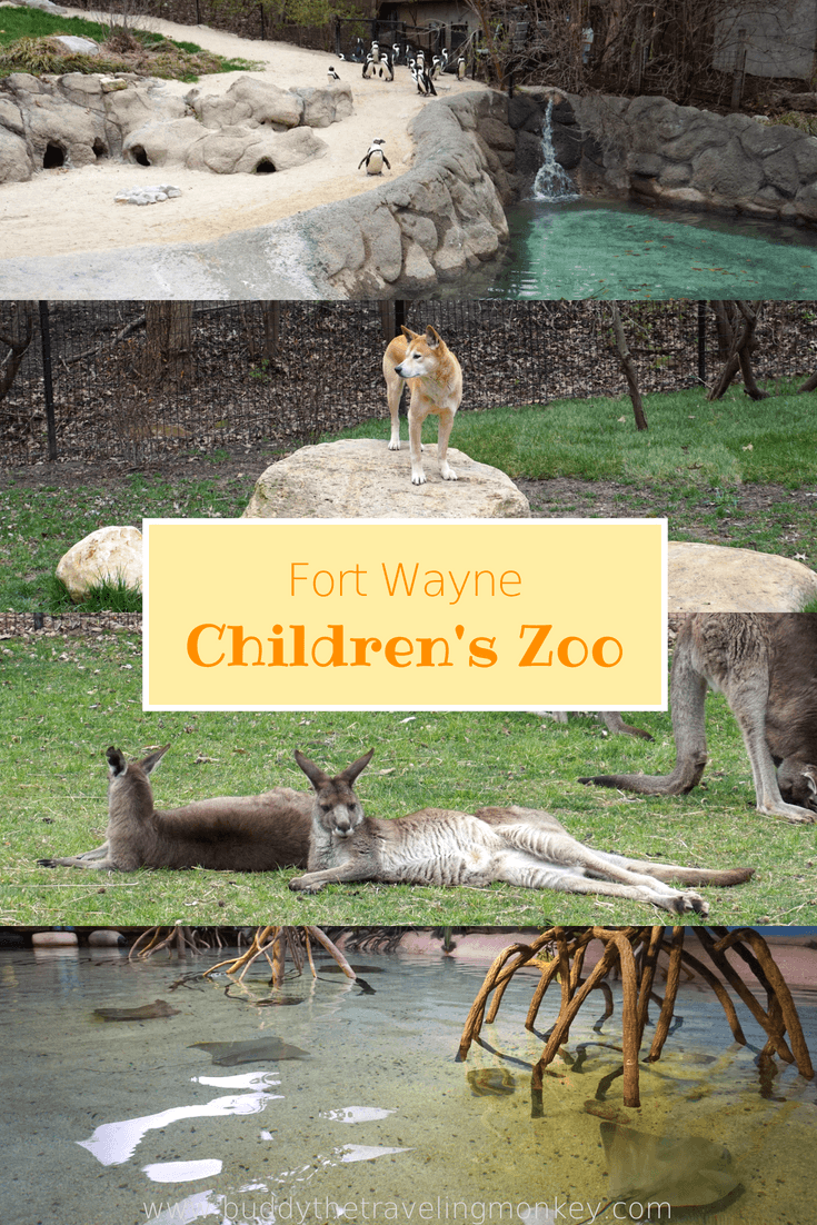 Everything you need to know about the Fort Wayne Children's Zoo in Indiana. See why it's always voted one of the top Fort Wayne attractions!