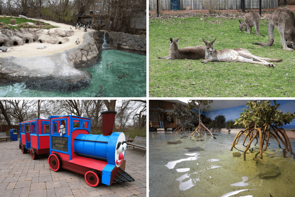 Things to do with kids in Fort Wayne, take them to the Fort Wayne Children's Zoo