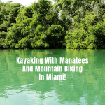 Kayaking With Manatees And Mountain Biking In Miami