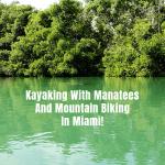 Kayaking With Manatees And Mountain Biking In Miami