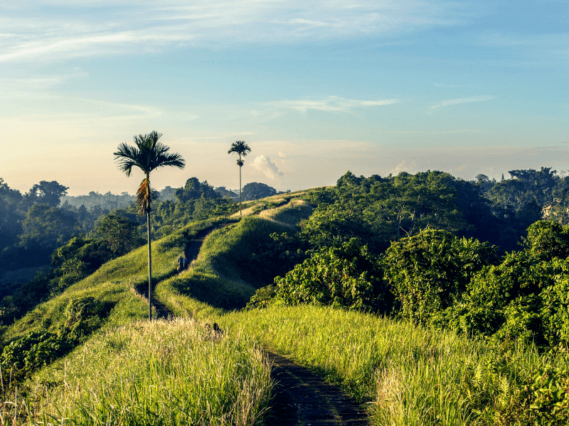 Campuhan Ridge is one of the Magical Places to Visit in Bali