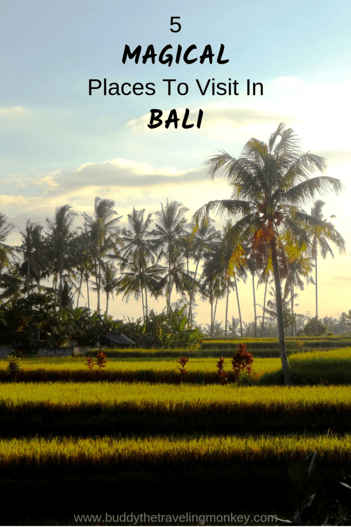 These five magical places to visit in Bali will leave you breathless! You many never want to leave this gorgeous island in Indonesia.