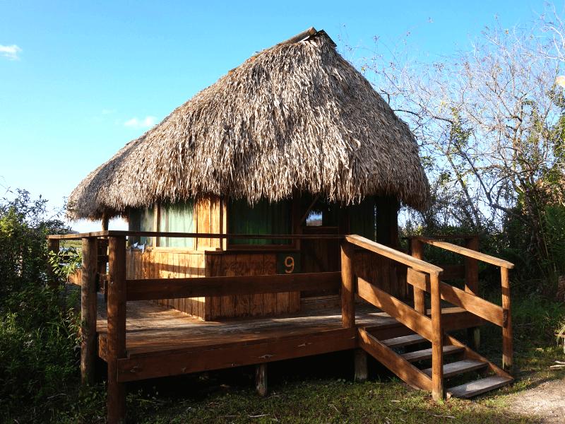 Billie Swamp Safari chickee hut where we spent the night