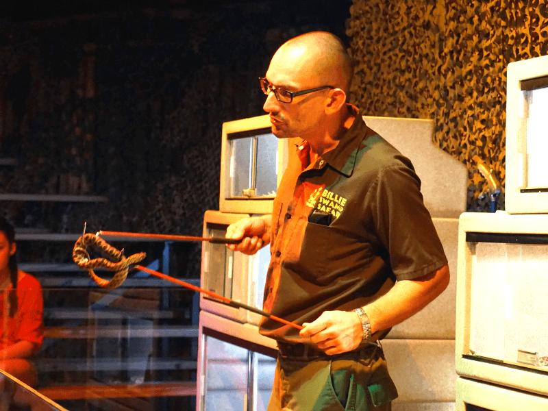 Billie Swamp Safari snake show