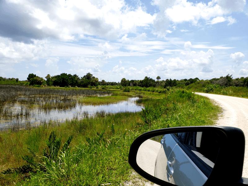 Black Point Wildlife Drive