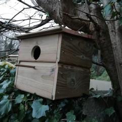 Thomas-Wickett-Bird-Box