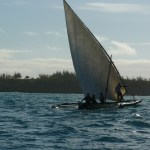 Safari to Zanzibar Package Holiday 5 Days
