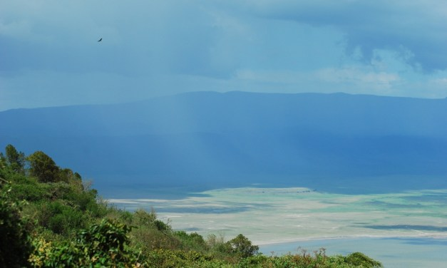 Northern Tanzania Camping Safari 4 Days