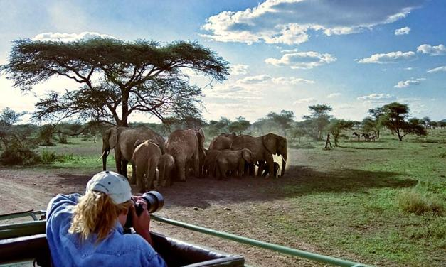 2 Day Safari Tarangire  Ngorongoro Crater