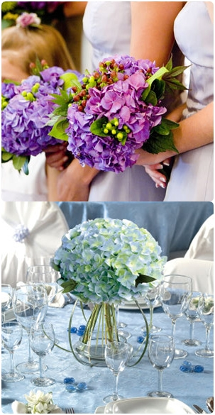 hydrangea autumn wedding flowers