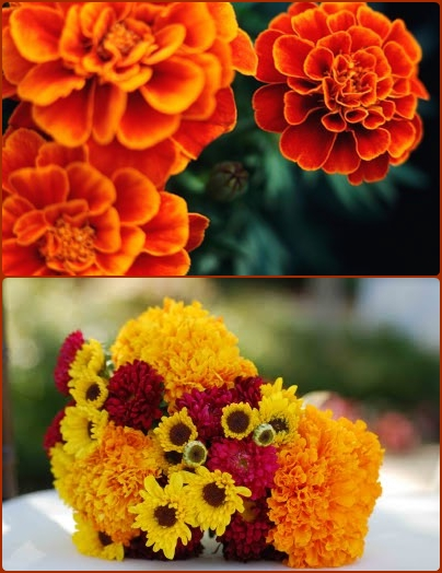 marigold fall wedding flowers