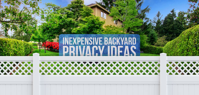 7 inexpensive backyard privacy ideas budget dumpster