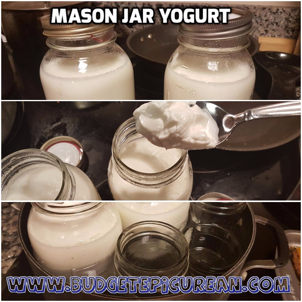 How To Make Yogurt Cheaply Budget Epicurean