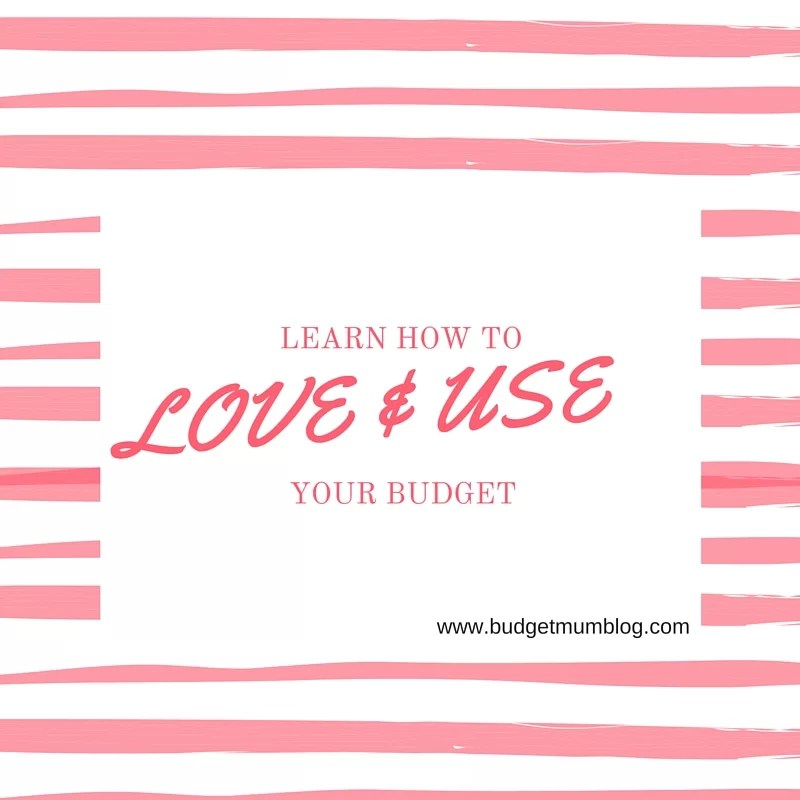 love and use your budget