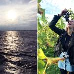 Weg stress: 't Lauwersmeergebied in 13 foto's