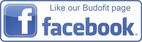 facebook-logo-budofit-page