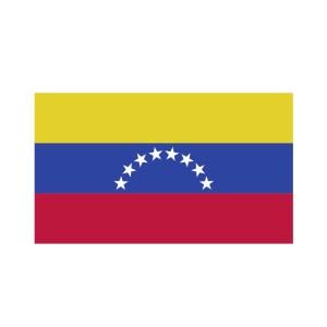 Bügelbild Venezuela Flagge