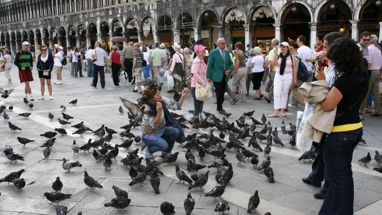 veneza ataque pombos san marco