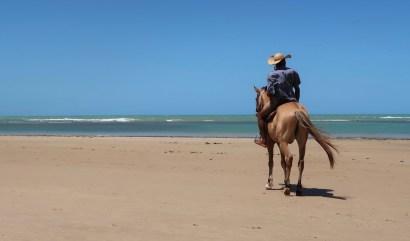 Passeio a cavalo na Praia dos Coqueiros