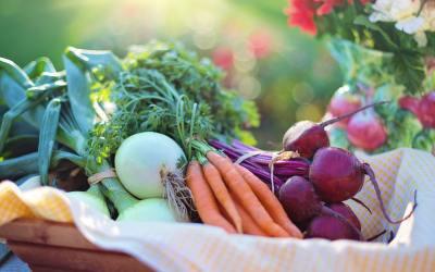 Octubre: Guía de Frutas y Verduras de Temporada