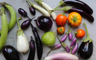 Febrero: productos de temporada para disfrutar todo el mes