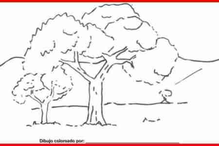 Results for Imagenes De Un Paisaje Natural Para Dibujar Faciles