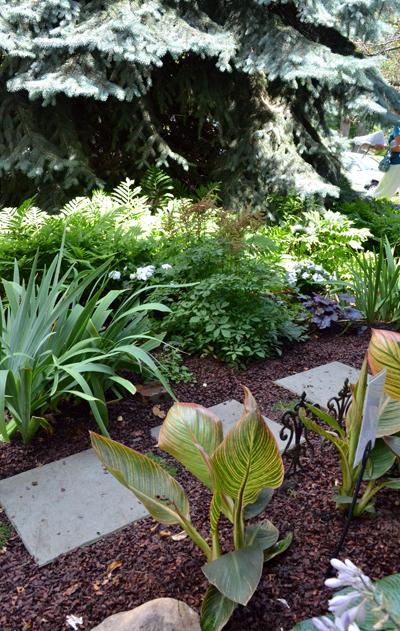 grassless front yard in Buffalo NY closeup | Buffalo ... on Grassless Garden Ideas  id=12404