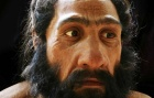A hyper-realistic recreation of a Neanderthal.