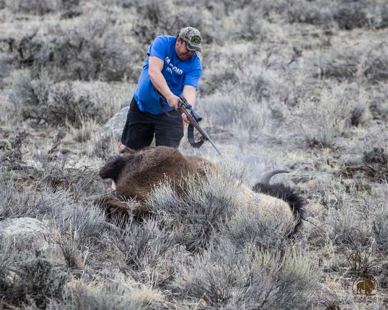 Bison Slaughter 9