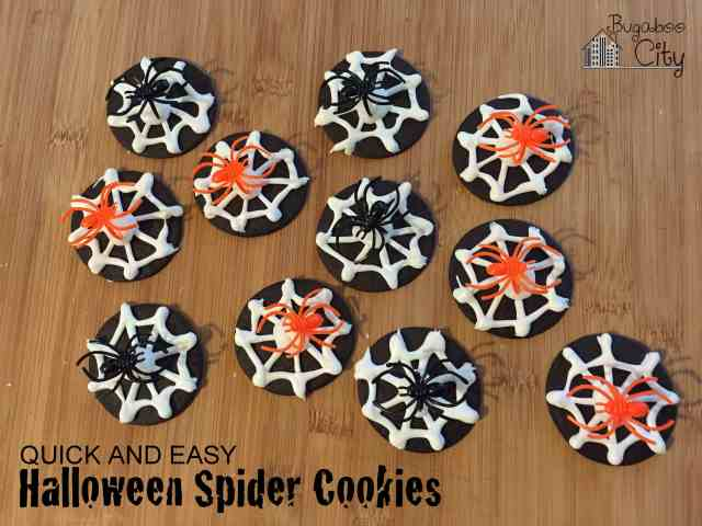 Quick and easy Halloween spider cookies!